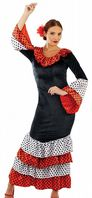 Flamenco Dancer Costume (4335)